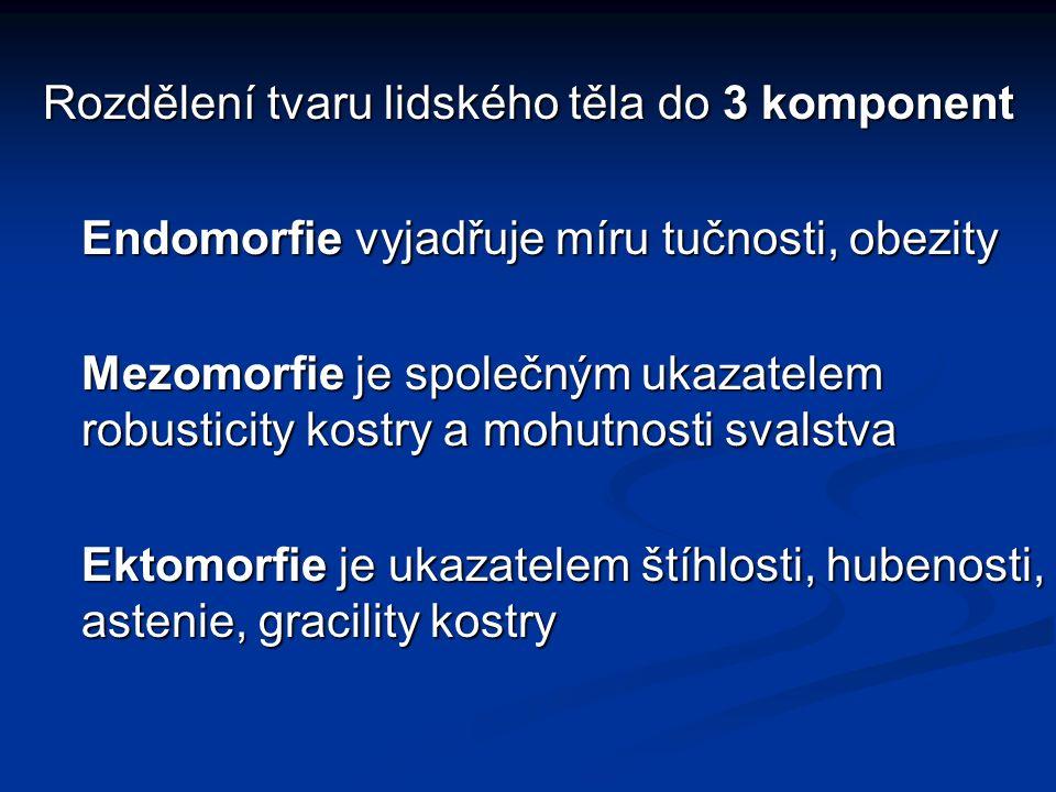 Rozdělení tvaru lidského těla do 3 komponent Endomorfie vyjadřuje míru tučnosti, obezity Mezomorfie je společným ukazatelem robusticity kostry a mohutnosti svalstva Ektomorfie je ukazatelem štíhlosti, hubenosti, astenie, gracility kostry