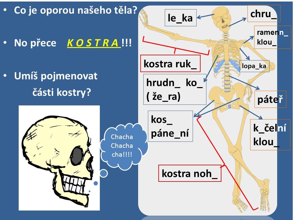 Co je oporou našeho těla? No přece K O S T R A !!! Umíš pojmenovat části kostry? le_ka páteř hrudn_ ko_ ( že_ra) ramenn_ klou_ kos_ páne_ní k_čelní kl