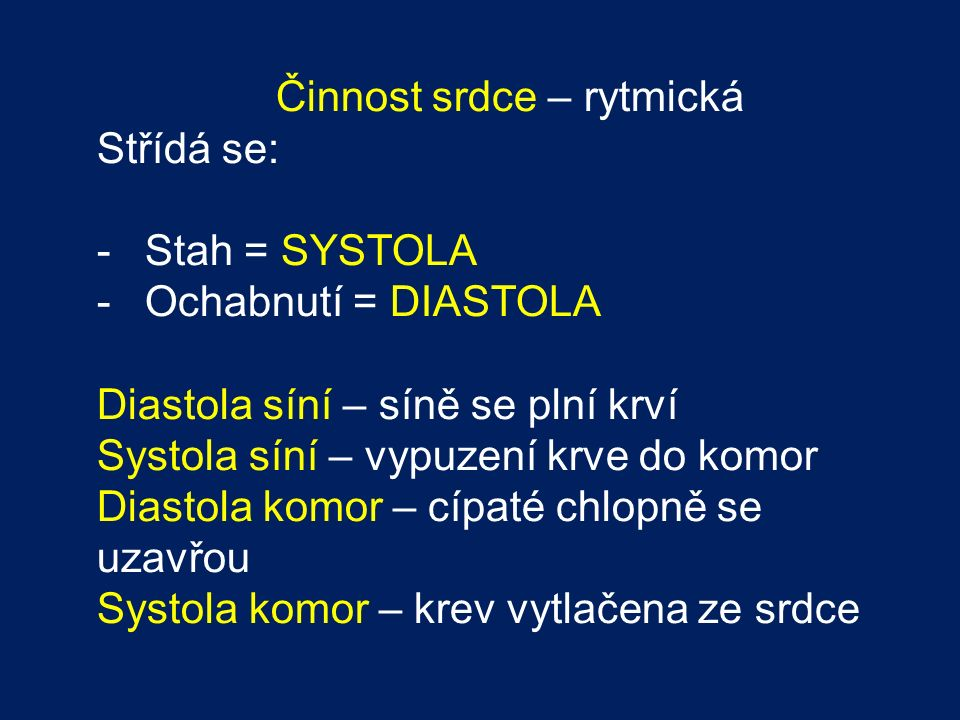 Činnost srdce – rytmická Střídá se: -Stah = SYSTOLA -Ochabnutí = DIASTOLA Diastola síní – síně se plní krví Systola síní – vypuzení krve do komor Diastola komor – cípaté chlopně se uzavřou Systola komor – krev vytlačena ze srdce