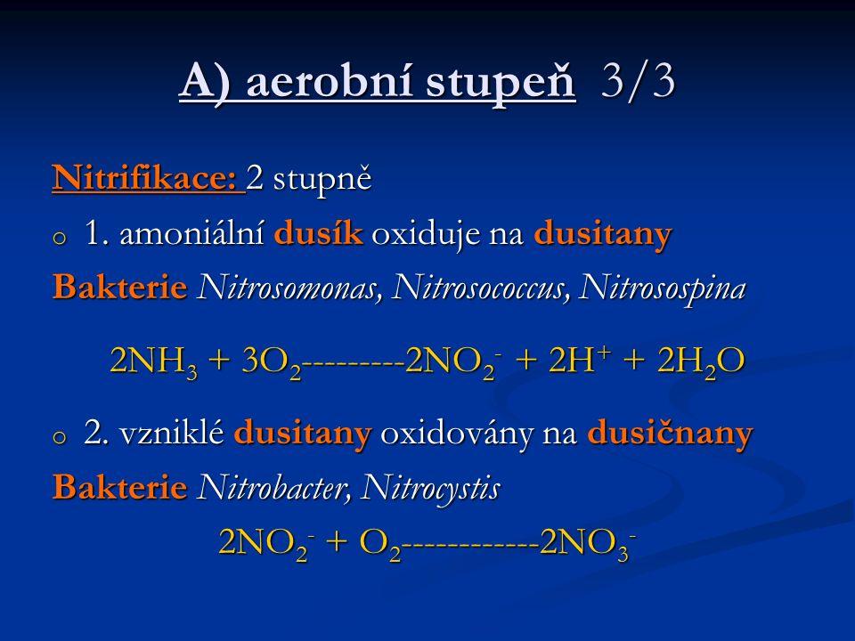 A) aerobní stupeň 3/3 Nitrifikace: 2 stupně o 1. amoniální dusík oxiduje na dusitany Bakterie Nitrosomonas, Nitrosococcus, Nitrosospina 2NH 3 + 3O 2 -