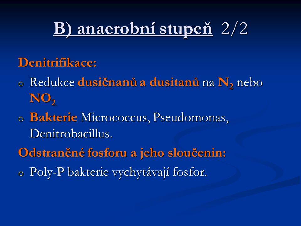 B) anaerobní stupeň 2/2 Denitrifikace: o Redukce dusičnanů a dusitanů na N 2 nebo NO 2. o Bakterie Micrococcus, Pseudomonas, Denitrobacillus. Odstraně