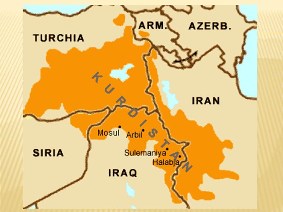  PJAK: íránské hnutí bojující za samostatnost  PKK: Strana kurdských pracujících, kořeny v Turecku  HHK: vládnoucí orgán iráckého Kurdistánu  jezídové: komunita, kde se mísí prvky židovství, křesťanství, islámu, hinduismu a dalších náboženství  pešmergové: kurdské milice v Iráku  PYD: Strana demokratické jednoty, syrský Kurdistán  YPG: ozbrojená složka PYD