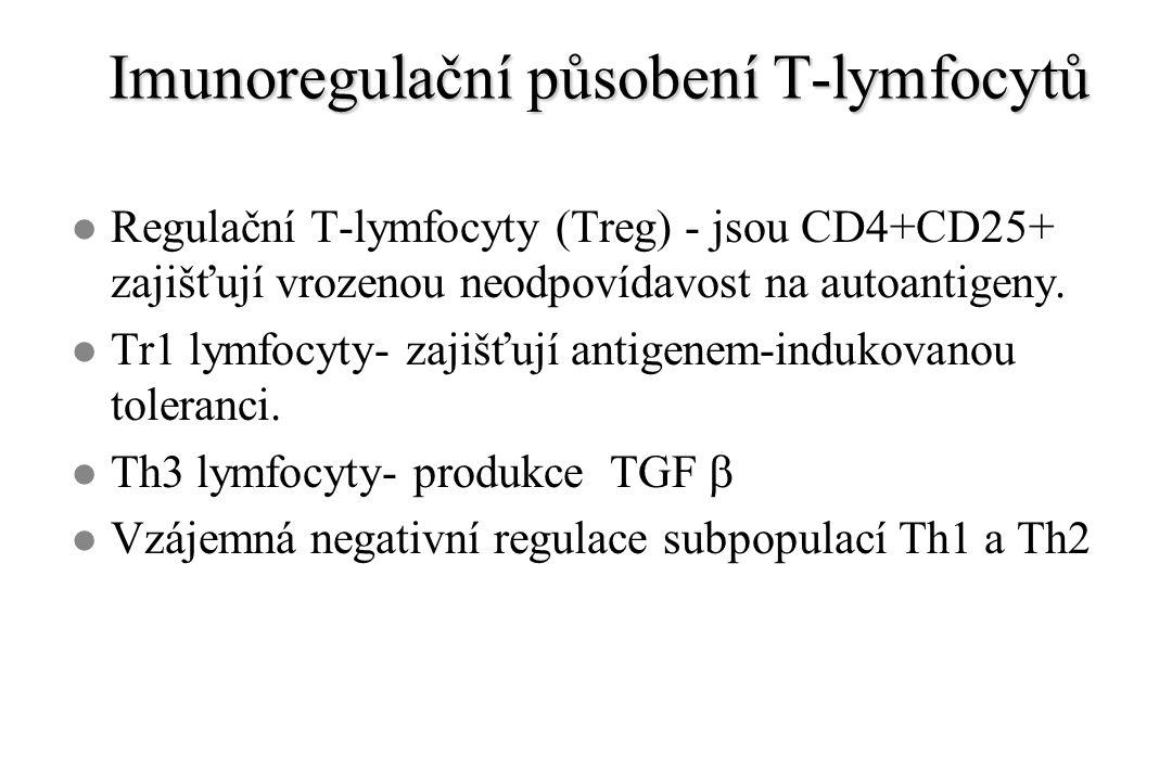 Imunoregulační působení T-lymfocytů l Regulační T-lymfocyty (Treg) - jsou CD4+CD25+ zajišťují vrozenou neodpovídavost na autoantigeny.