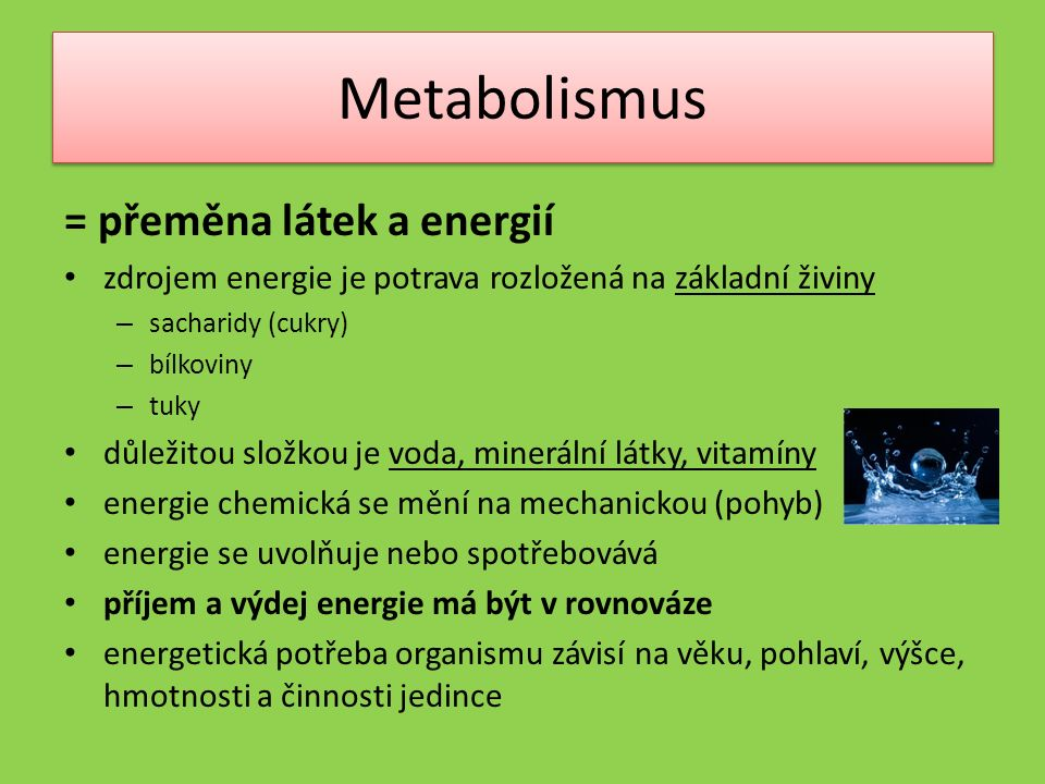 Metabolismus = přeměna látek a energií zdrojem energie je potrava rozložená na základní živiny – sacharidy (cukry) – bílkoviny – tuky důležitou složkou je voda, minerální látky, vitamíny energie chemická se mění na mechanickou (pohyb) energie se uvolňuje nebo spotřebovává příjem a výdej energie má být v rovnováze energetická potřeba organismu závisí na věku, pohlaví, výšce, hmotnosti a činnosti jedince