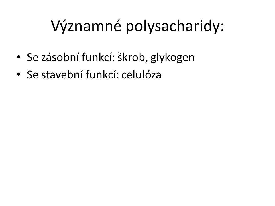 Škrob Výskyt: v rostlinách (vznik při fotosyntéze) Např.: hlízy brambor