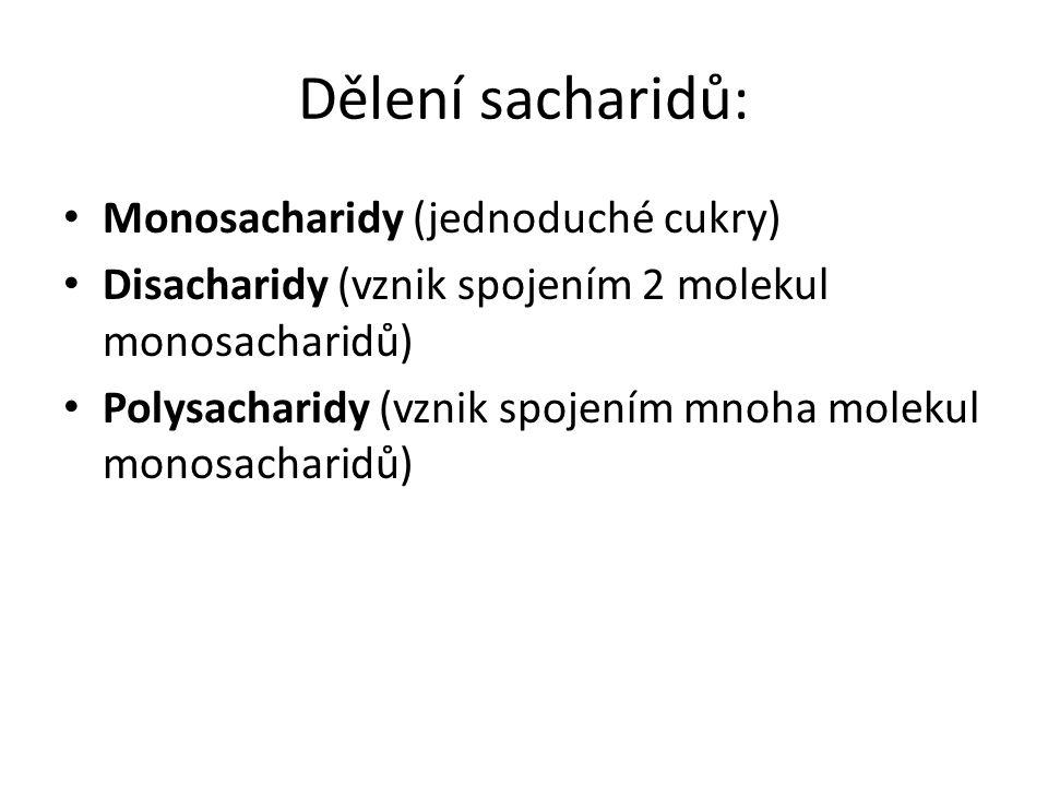 Dělení sacharidů: Monosacharidy (jednoduché cukry) Disacharidy (vznik spojením 2 molekul monosacharidů) Polysacharidy (vznik spojením mnoha molekul monosacharidů)