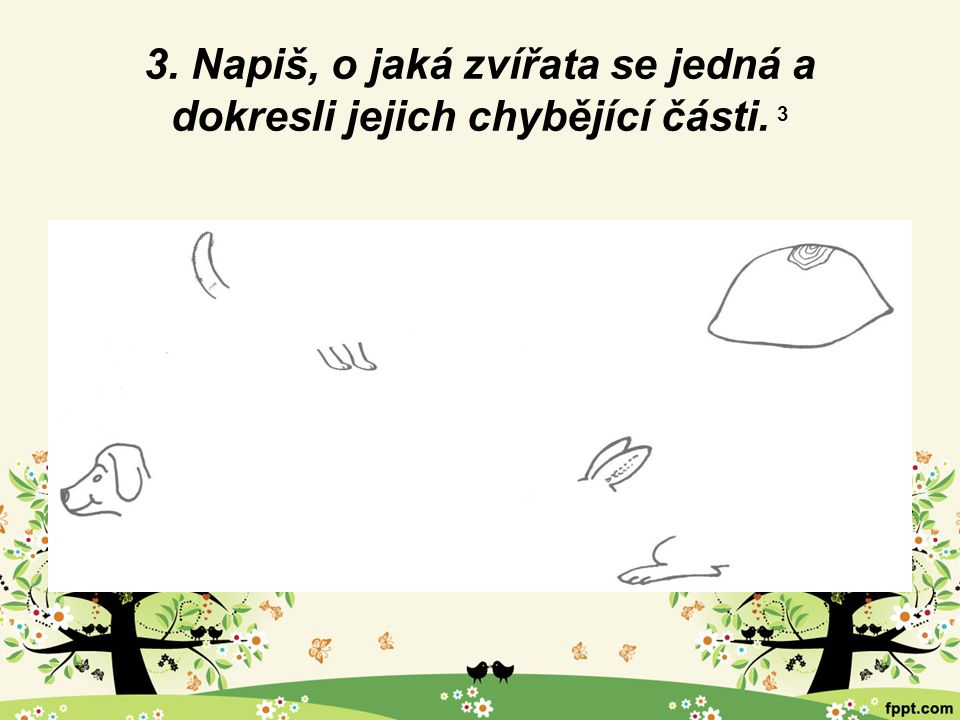 3. Napiš, o jaká zvířata se jedná a dokresli jejich chybějící části. 3