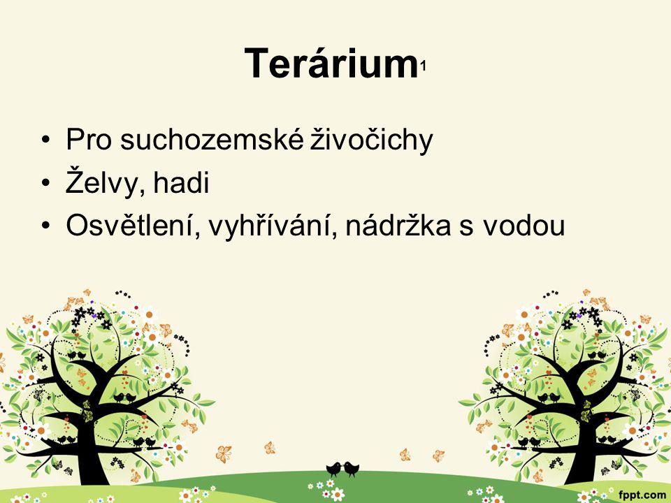 Terárium 1 Pro suchozemské živočichy Želvy, hadi Osvětlení, vyhřívání, nádržka s vodou