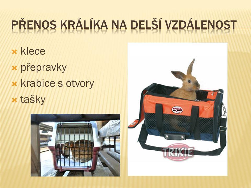  klece  přepravky  krabice s otvory  tašky