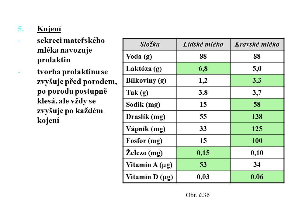 5.Kojení -sekreci mateřského mléka navozuje prolaktin -tvorba prolaktinu se zvyšuje před porodem, po porodu postupně klesá, ale vždy se zvyšuje po každém kojení Složka Lidské mléko Kravské mléko Voda (g)88 Laktóza (g)6,85,0 Bílkoviny (g)1,23,3 Tuk (g)3.83,7 Sodík (mg)1558 Draslík (mg)55138 Vápník (mg)33125 Fosfor (mg)15100 Železo (mg)0,150,10 Vitamín A (  g) 5334 Vitamín D (  g) 0,030.06 Obr.