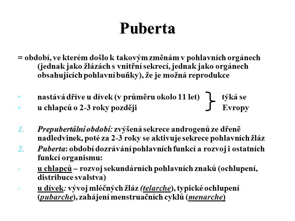 Puberta = období, ve kterém došlo k takovým změnám v pohlavních orgánech (jednak jako žlázách s vnitřní sekrecí, jednak jako orgánech obsahujících pohlavní buňky), že je možná reprodukce nastává dříve u dívek (v průměru okolo 11 let) týká se u chlapců o 2-3 roky později Evropy 1.Prepubertální období 1.Prepubertální období: zvýšená sekrece androgenů ze dřeně nadledvinek, poté za 2-3 roky se aktivuje sekrece pohlavních žláz 2.Puberta 2.Puberta: období dozrávání pohlavních funkcí a rozvoj i ostatních funkcí organismu: -u chlapců – rozvoj sekundárních pohlavních znaků (ochlupení, distribuce svalstva) -u dívek: vývoj mléčných žláz (telarche), typické ochlupení (pubarche), zahájení menstruačních cyklů (menarche)