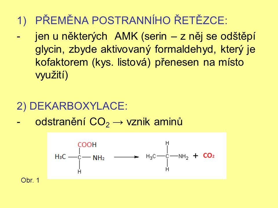 1)PŘEMĚNA POSTRANNÍHO ŘETĚZCE: -jen u některých AMK (serin – z něj se odštěpí glycin, zbyde aktivovaný formaldehyd, který je kofaktorem (kys.