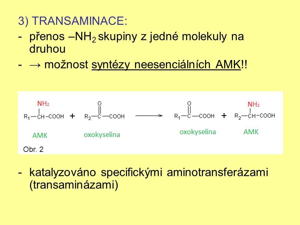 3) TRANSAMINACE: -přenos –NH 2 skupiny z jedné molekuly na druhou -→ možnost syntézy neesenciálních AMK!.