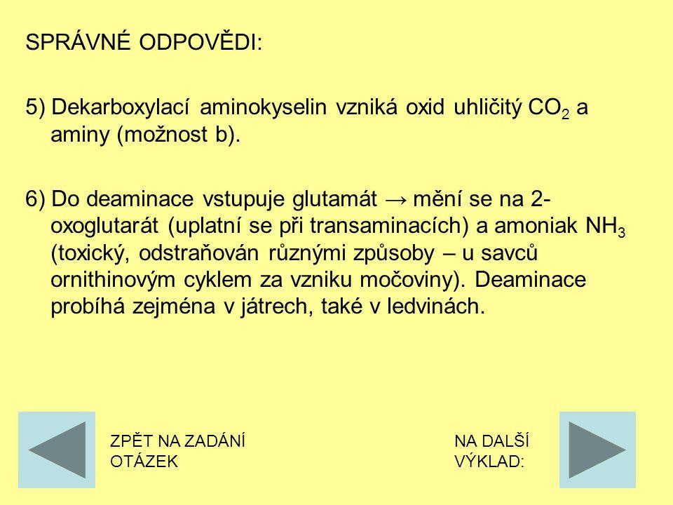 SPRÁVNÉ ODPOVĚDI: 5) Dekarboxylací aminokyselin vzniká oxid uhličitý CO 2 a aminy (možnost b).