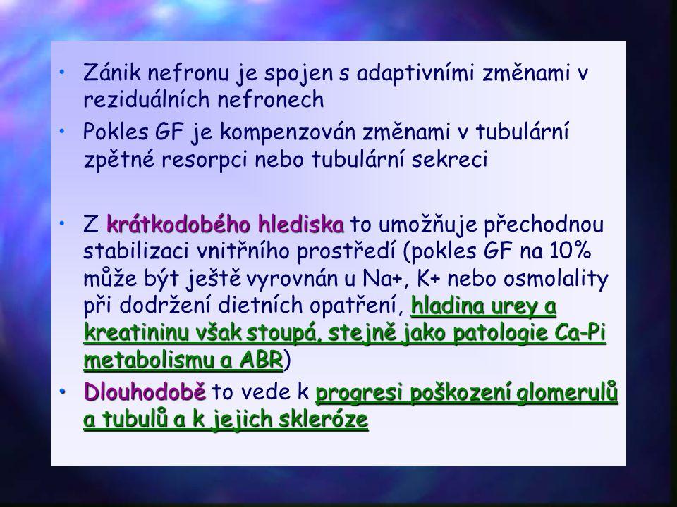 Zánik nefronu je spojen s adaptivními změnami v reziduálních nefronech Pokles GF je kompenzován změnami v tubulární zpětné resorpci nebo tubulární sekreci krátkodobého hlediska hladina urey a kreatininu však stoupá, stejně jako patologie Ca-Pi metabolismu a ABRZ krátkodobého hlediska to umožňuje přechodnou stabilizaci vnitřního prostředí (pokles GF na 10% může být ještě vyrovnán u Na+, K+ nebo osmolality při dodržení dietních opatření, hladina urey a kreatininu však stoupá, stejně jako patologie Ca-Pi metabolismu a ABR) Dlouhodoběprogresi poškození glomerulů a tubulů a k jejich sklerózeDlouhodobě to vede k progresi poškození glomerulů a tubulů a k jejich skleróze