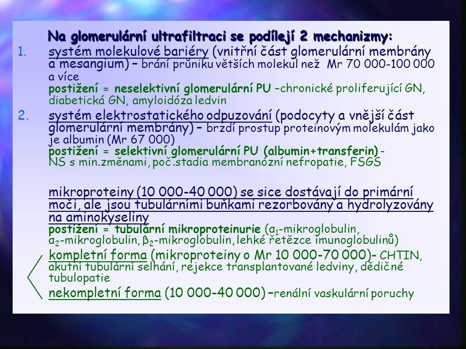 Na glomerulární ultrafiltraci se podílejí 2 mechanizmy: Na glomerulární ultrafiltraci se podílejí 2 mechanizmy: 1. 1.systém molekulové bariéry (vnitřn