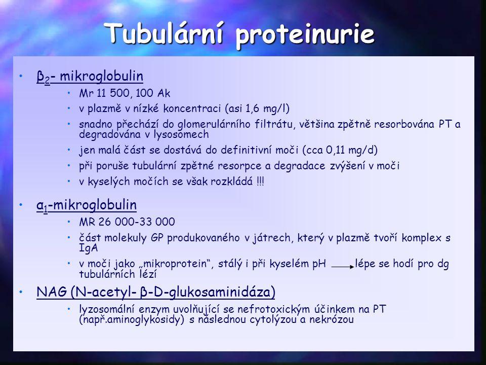 β 2 - mikroglobulin Mr 11 500, 100 Ak v plazmě v nízké koncentraci (asi 1,6 mg/l) snadno přechází do glomerulárního filtrátu, většina zpětně resorbována PT a degradována v lysosomech jen malá část se dostává do definitivní moči (cca 0,11 mg/d) při poruše tubulární zpětné resorpce a degradace zvýšení v moči v kyselých močích se však rozkládá !!.