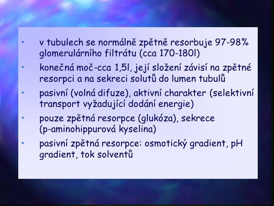 v tubulech se normálně zpětně resorbuje 97-98% glomerulárního filtrátu (cca 170-180l) konečná moč-cca 1,5l, její složení závisí na zpětné resorpci a na sekreci solutů do lumen tubulů pasivní (volná difuze), aktivní charakter (selektivní transport vyžadující dodání energie) pouze zpětná resorpce (glukóza), sekrece (p-aminohippurová kyselina) pasivní zpětná resorpce: osmotický gradient, pH gradient, tok solventů