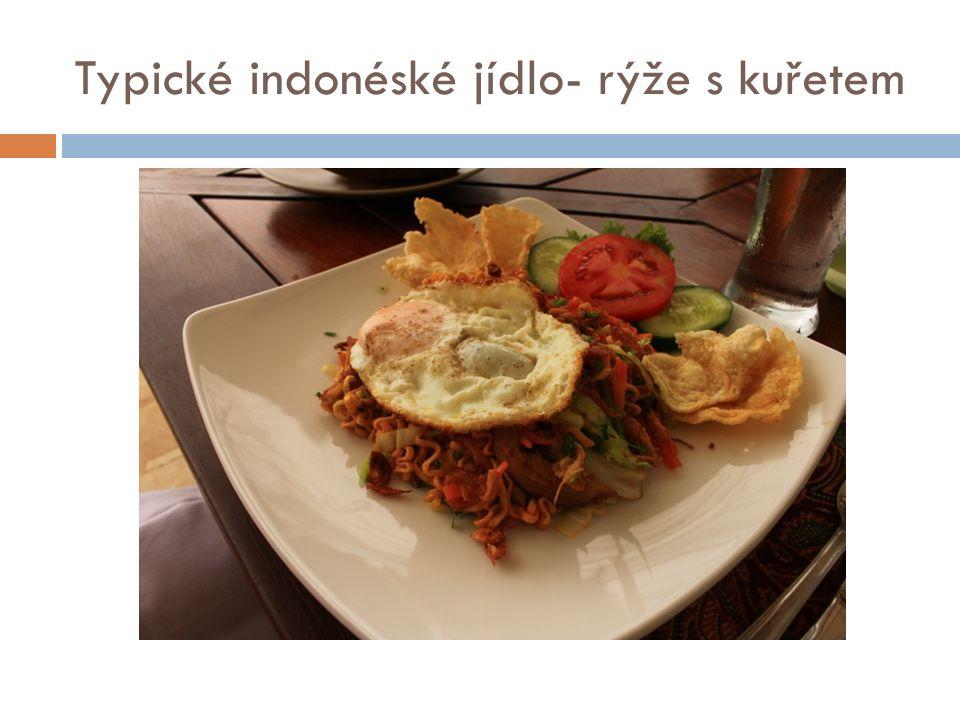 Typické indonéské jídlo- rýže s kuřetem