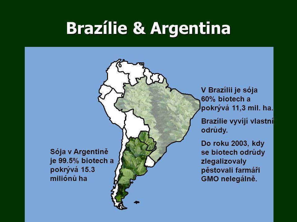 V Brazílii je sója 60% biotech a pokrývá 11,3 mil. ha. Brazílie vyvíjí vlastní odrůdy. Do roku 2003, kdy se biotech odrůdy zlegalizovaly pěstovali far