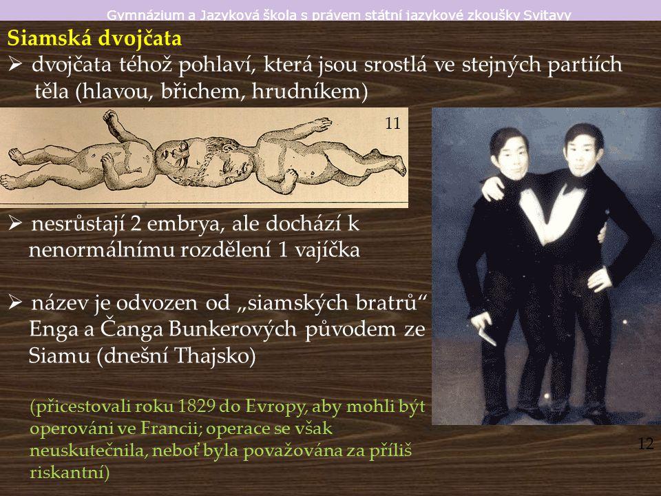 """Gymnázium a Jazyková škola s právem státní jazykové zkoušky Svitavy Siamská dvojčata  dvojčata téhož pohlaví, která jsou srostlá ve stejných partiích těla (hlavou, břichem, hrudníkem)  nesrůstají 2 embrya, ale dochází k nenormálnímu rozdělení 1 vajíčka  název je odvozen od """"siamských bratrů Enga a Čanga Bunkerových původem ze Siamu (dnešní Thajsko) (přicestovali roku 1829 do Evropy, aby mohli být operováni ve Francii; operace se však neuskutečnila, neboť byla považována za příliš riskantní) 12 11"""