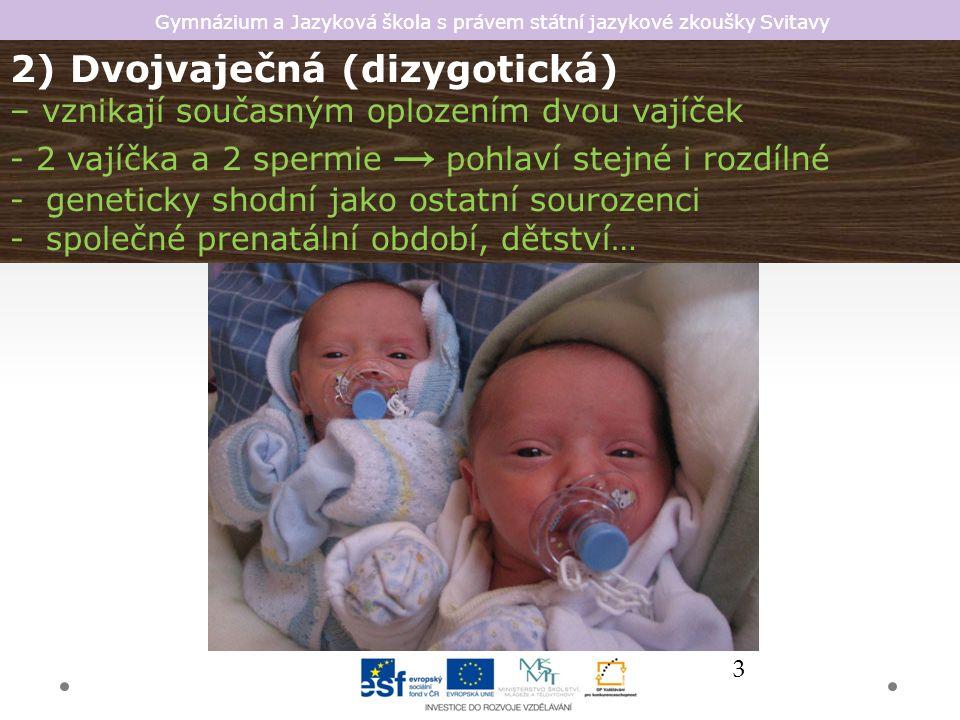 Gymnázium a Jazyková škola s právem státní jazykové zkoušky Svitavy Dvojčata v historii W.