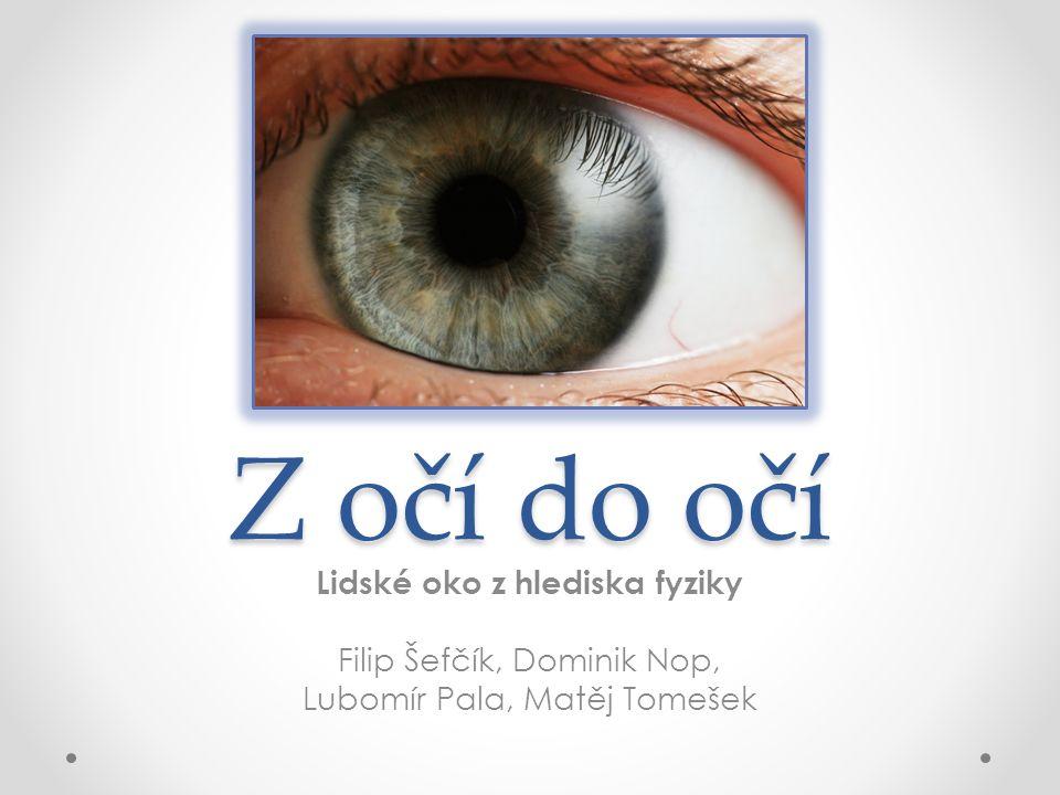 Z očí do očí Lidské oko z hlediska fyziky Filip Šefčík, Dominik Nop, Lubomír Pala, Matěj Tomešek