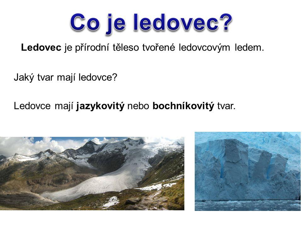Ledovce mají jazykovitý nebo bochníkovitý tvar.