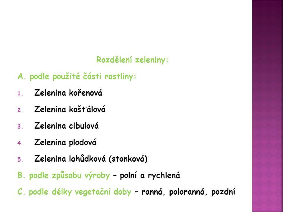 Rozdělení zeleniny: A. podle použité části rostliny: 1.