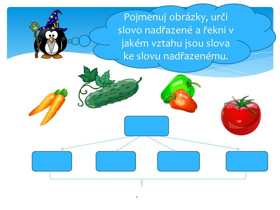 5 ř 1.Pojmenuj opět obrázky 2.Jak říkáme slovům, která si jsou rovna, pro něž existuje stejné slovo nadřazené.