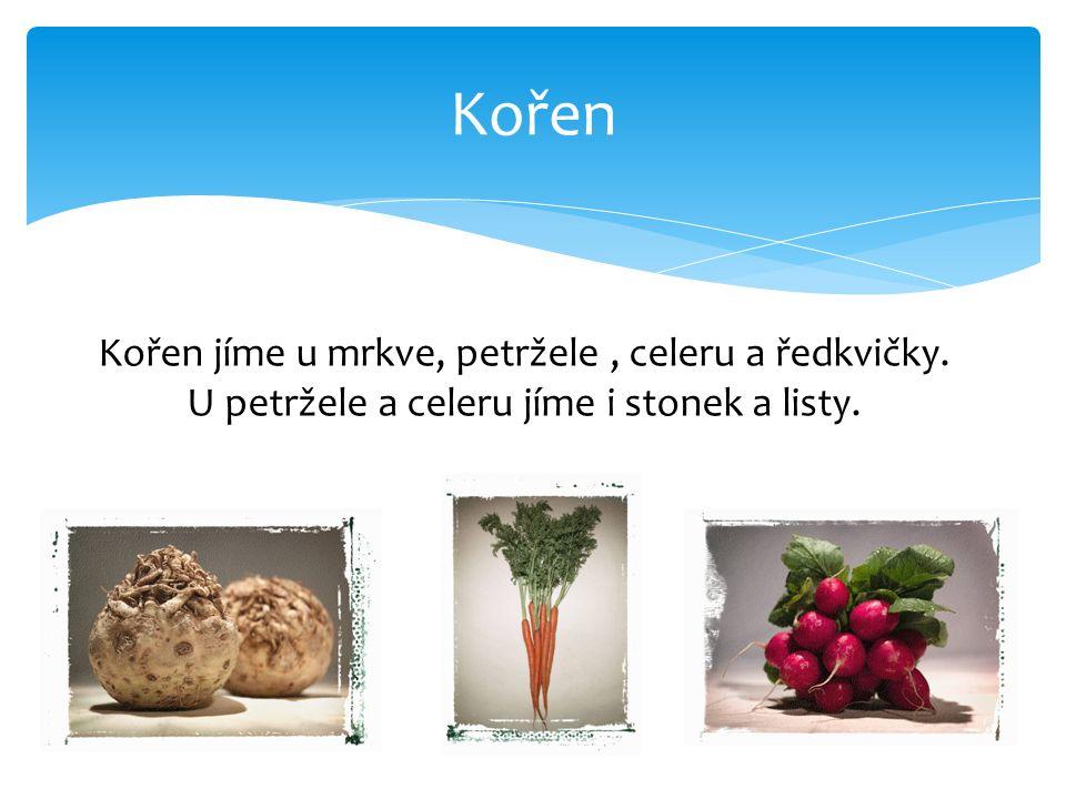 Kořen 10 Kořen jíme u mrkve, petržele, celeru a ředkvičky.