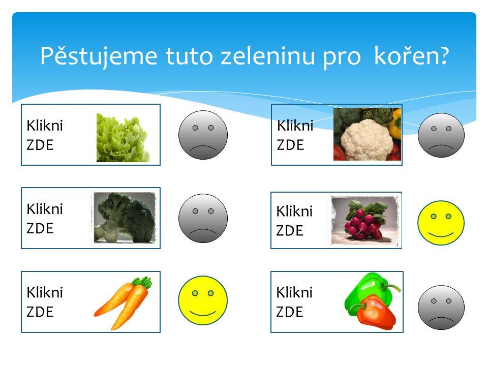 Pěstujeme tuto zeleninu pro kořen.