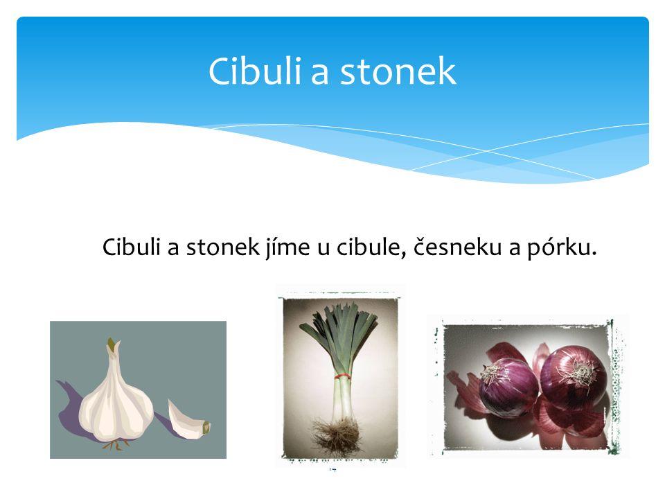 Cibuli a stonek 14 Cibuli a stonek jíme u cibule, česneku a pórku.