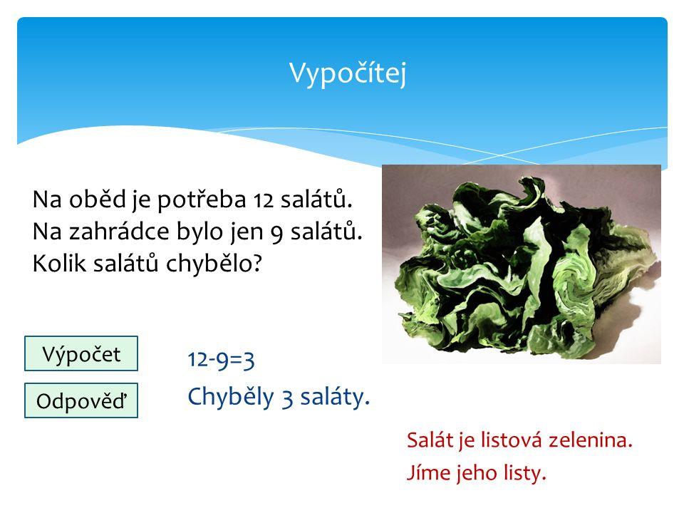 Vypočítej 12-9=3 Chyběly 3 saláty. Salát je listová zelenina.