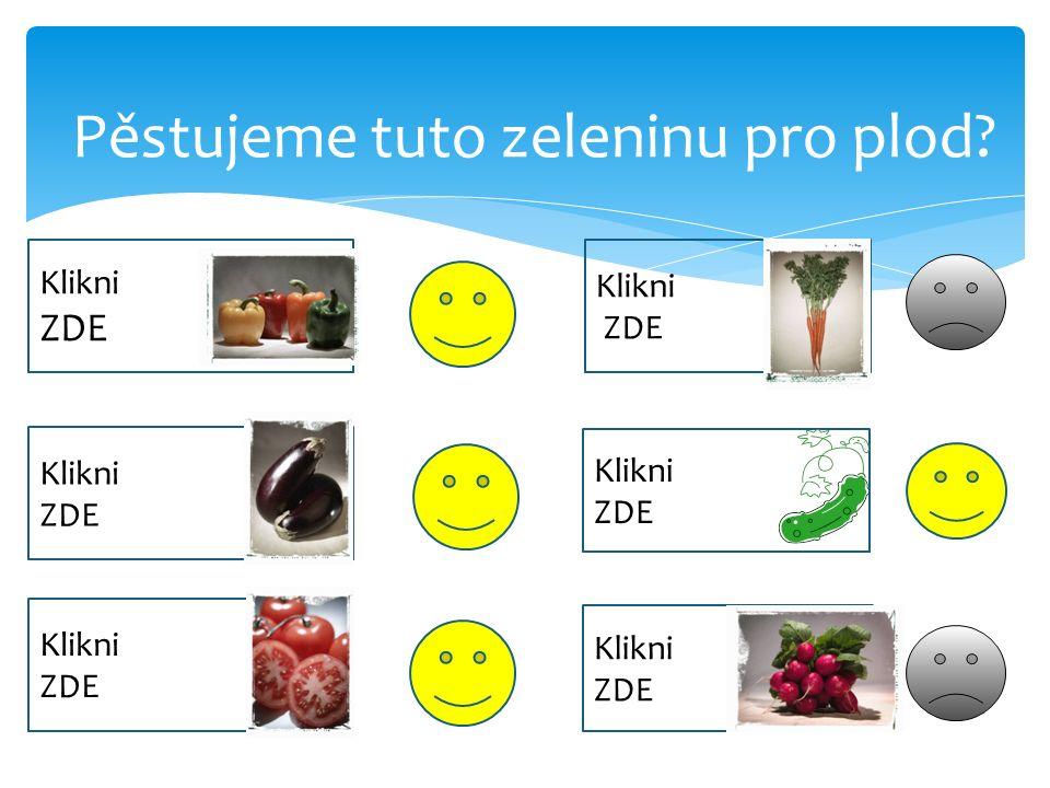 Pěstujeme tuto zeleninu pro plod? Klikni ZDE Klikni ZDE Klikni ZDE Klikni ZDE Klikni ZDE Klikni ZDE