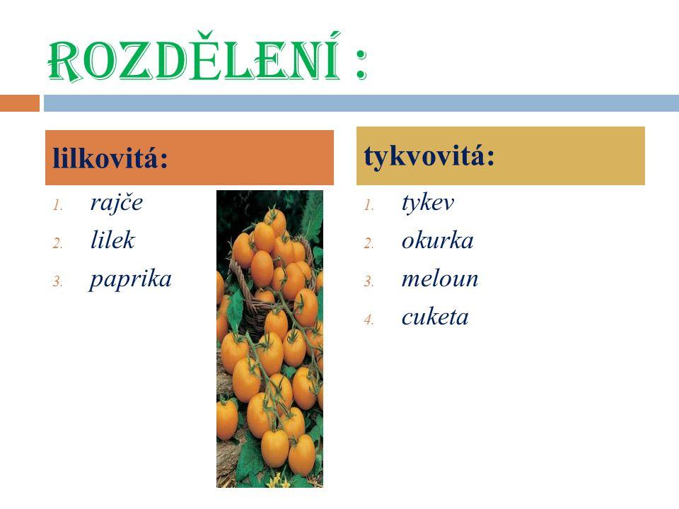 ROZD Ě LENÍ : 1. rajče 2. lilek 3. paprika 1. tykev 2.