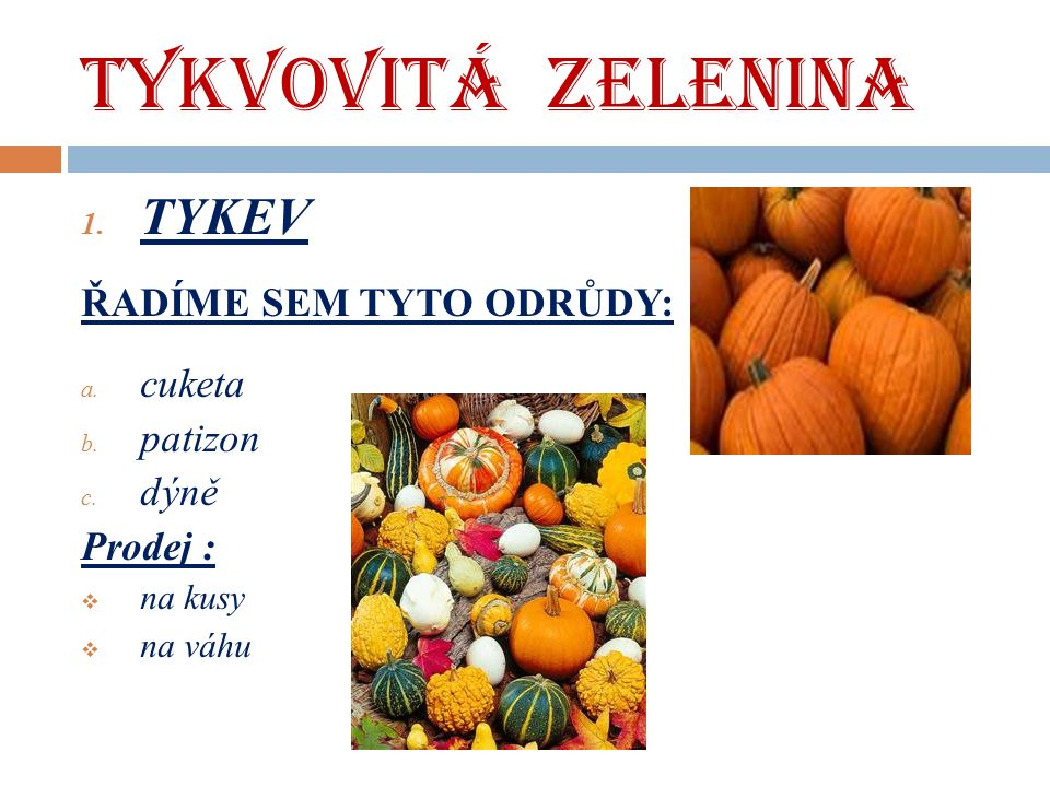 TYKVOVITÁ ZELENINA 1. TYKEV ŘADÍME SEM TYTO ODRŮDY: a.