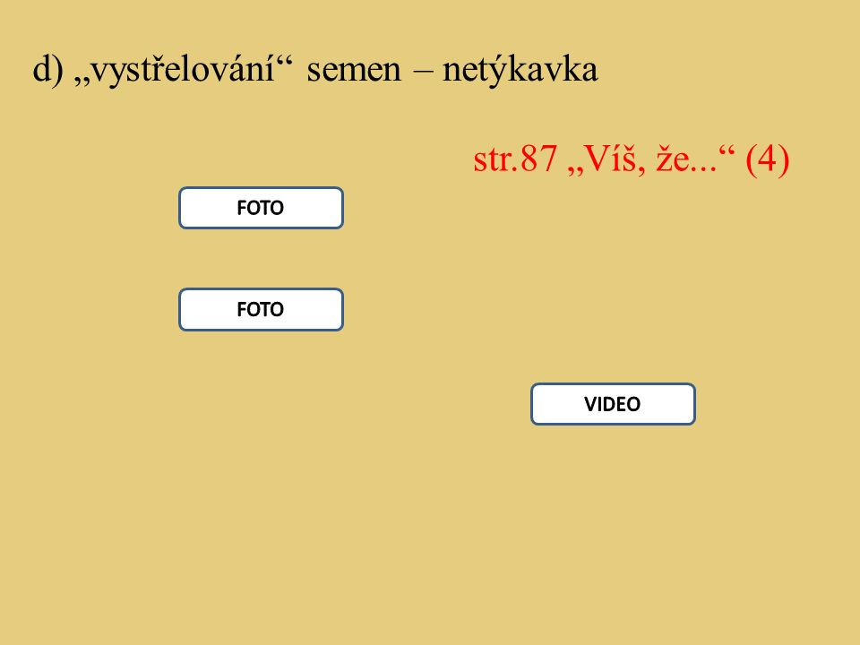 """d) """"vystřelování"""" semen – netýkavka str.87 """"Víš, že..."""" (4)"""