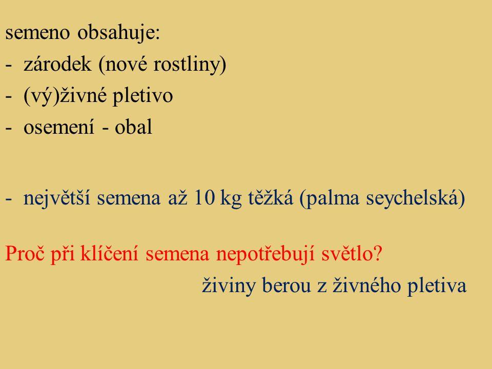 Plody: dužnaté suché 1.dužnaté: Co obsahují. - slupka -dužnina -semeno/a Jak dělíme dužnaté plody.
