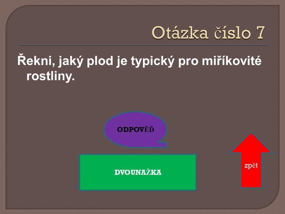 ODPOV ĚĎ PODB Ě L zp ě t