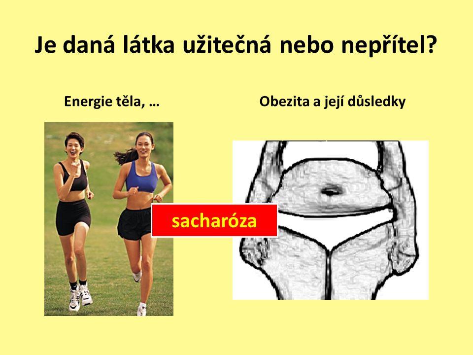 Je daná látka užitečná nebo nepřítel Energie těla, … Obezita a její důsledky sacharóza