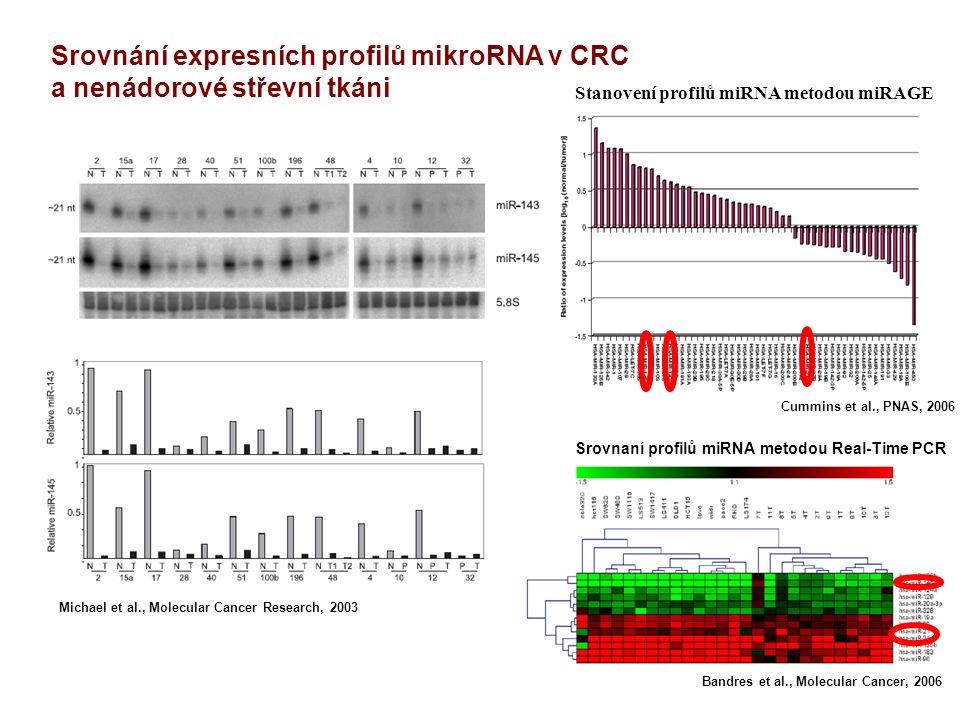 Michael et al., Molecular Cancer Research, 2003 Cummins et al., PNAS, 2006 Stanovení profilů miRNA metodou miRAGE Srovnaní profilů miRNA metodou Real-Time PCR Bandres et al., Molecular Cancer, 2006 Srovnání expresních profilů mikroRNA v CRC a nenádorové střevní tkáni