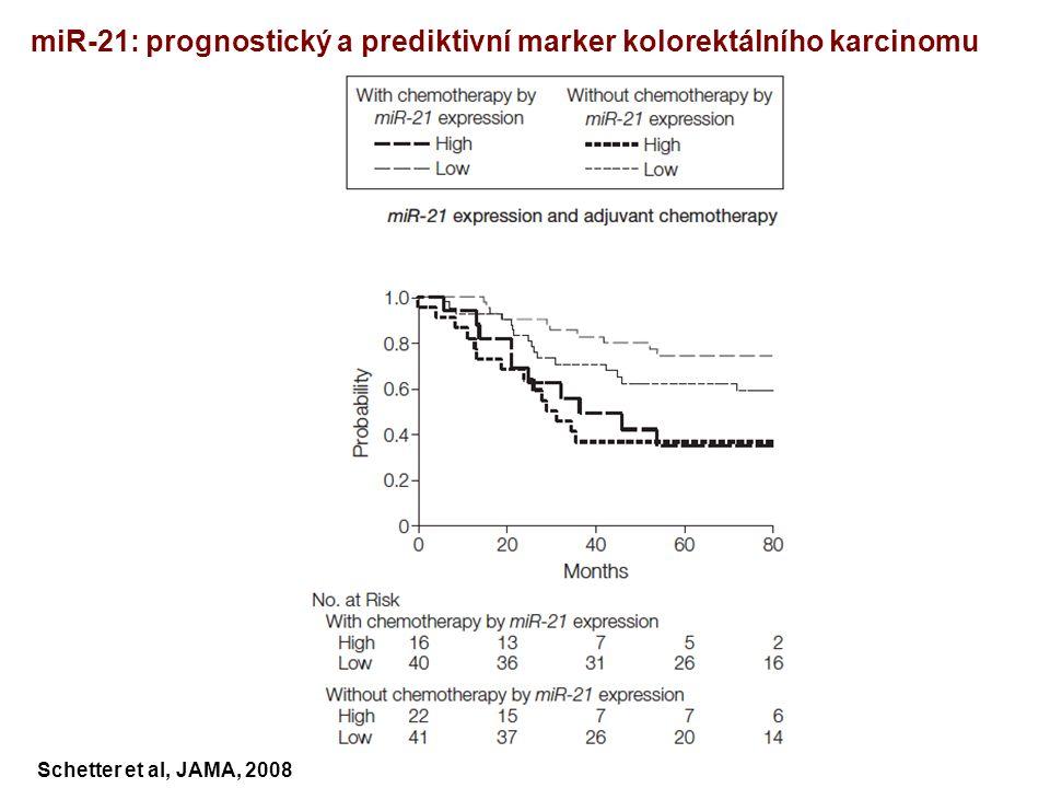 Schetter et al, JAMA, 2008 miR-21: prognostický a prediktivní marker kolorektálního karcinomu