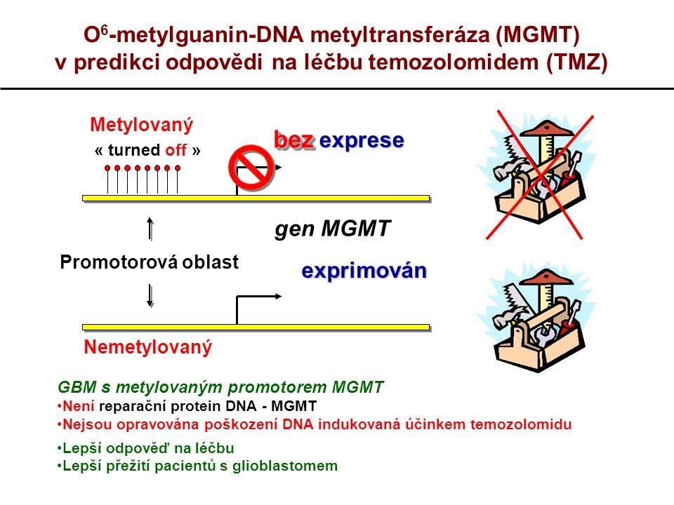 O 6 -metylguanin-DNA metyltransferáza (MGMT) v predikci odpovědi na léčbu temozolomidem (TMZ) gen MGMT exprese Promotorová oblast exprimován GBM s metylovaným promotorem MGMT Není reparační protein DNA - MGMT Nejsou opravována poškození DNA indukovaná účinkem temozolomidu Lepší odpověď na léčbu Lepší přežití pacientů s glioblastomem Metylovanýbezbez « turned off » Nemetylovaný