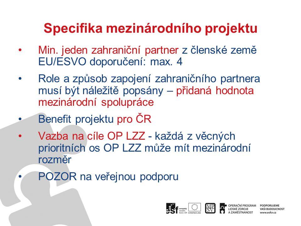 Specifika mezinárodního projektu Min.