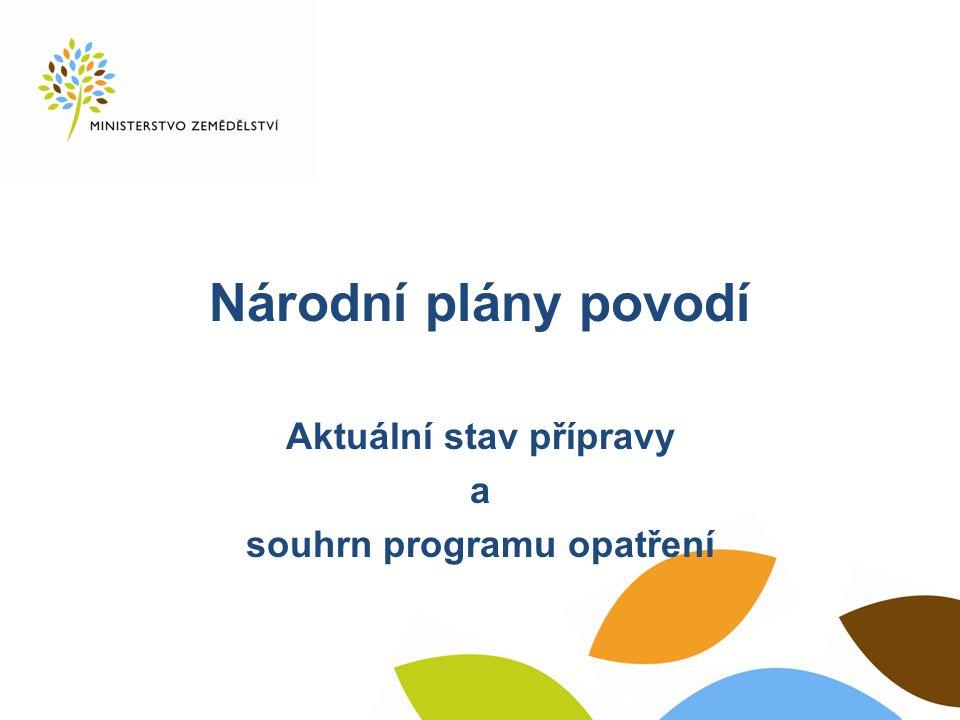Národní plány povodí Aktuální stav přípravy a souhrn programu opatření