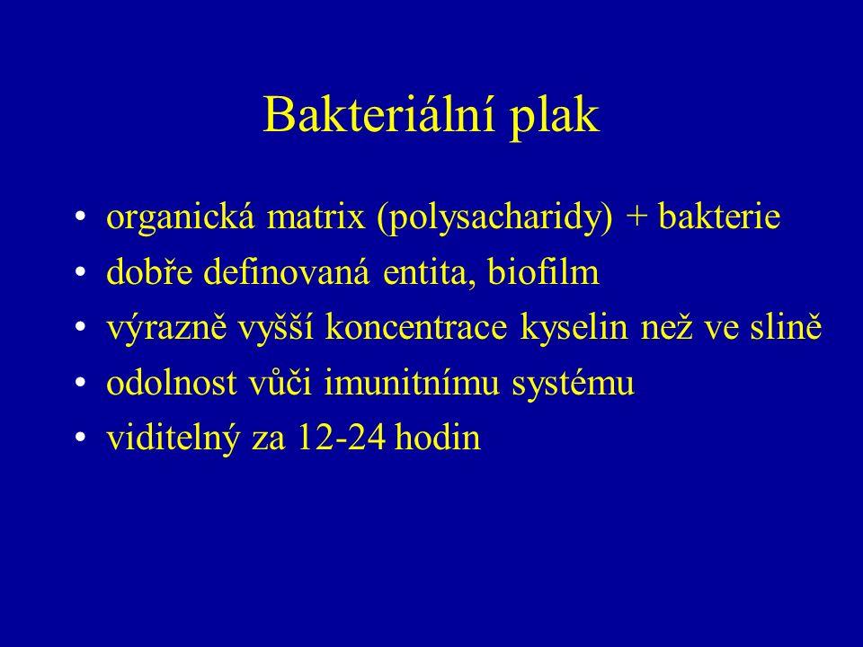 Bakteriální plak organická matrix (polysacharidy) + bakterie dobře definovaná entita, biofilm výrazně vyšší koncentrace kyselin než ve slině odolnost vůči imunitnímu systému viditelný za 12-24 hodin