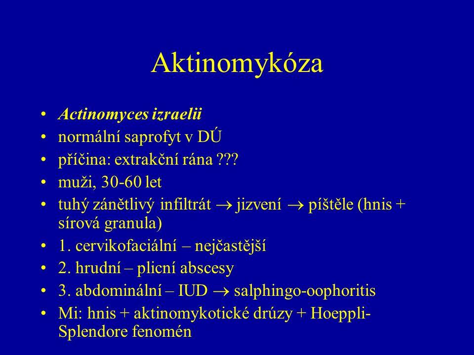 Aktinomykóza Actinomyces izraelii normální saprofyt v DÚ příčina: extrakční rána ??? muži, 30-60 let tuhý zánětlivý infiltrát  jizvení  píštěle (hni
