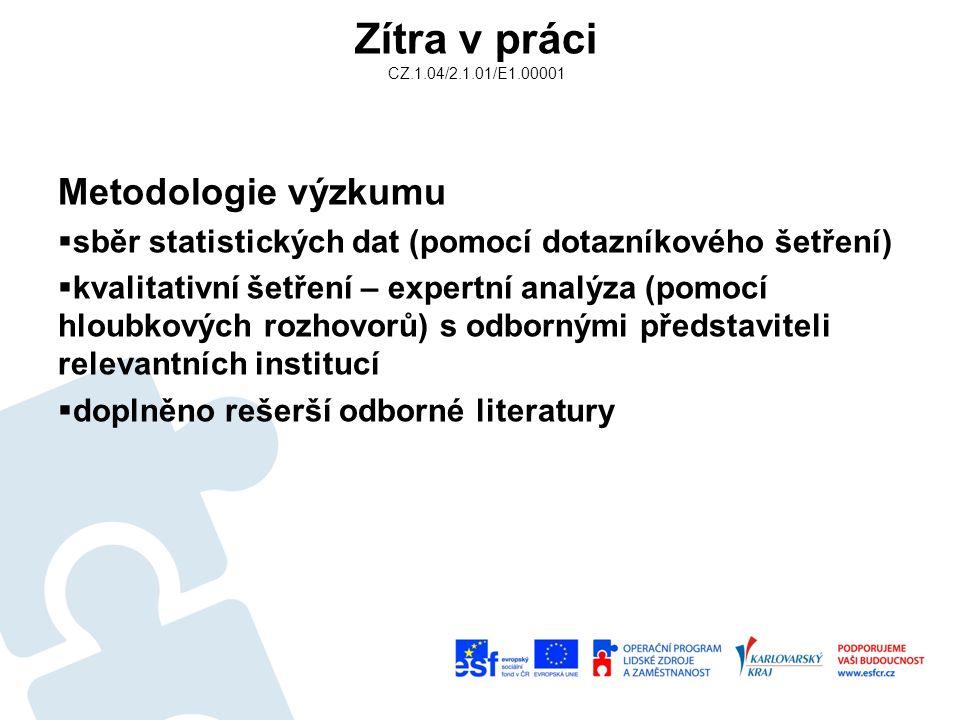 Zítra v práci CZ.1.04/2.1.01/E1.00001 Metodologie výzkumu  sběr statistických dat (pomocí dotazníkového šetření)  kvalitativní šetření – expertní analýza (pomocí hloubkových rozhovorů) s odbornými představiteli relevantních institucí  doplněno rešerší odborné literatury