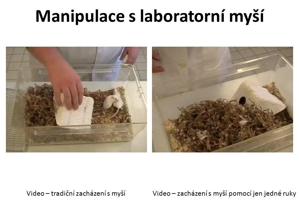 Manipulace s laboratorní myší Video – tradiční zacházení s myšíVideo – zacházení s myší pomocí jen jedné ruky